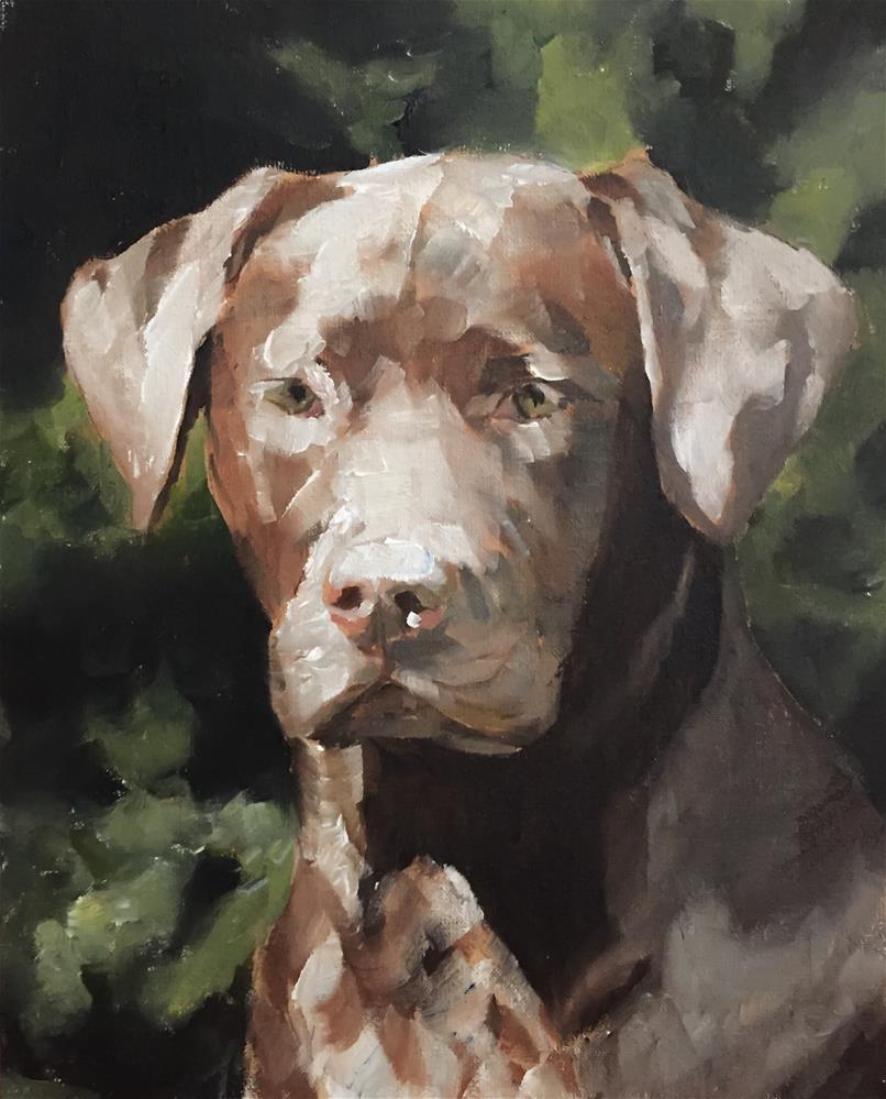 """""""Chocolate Labrador"""" original fine art by James Coates"""