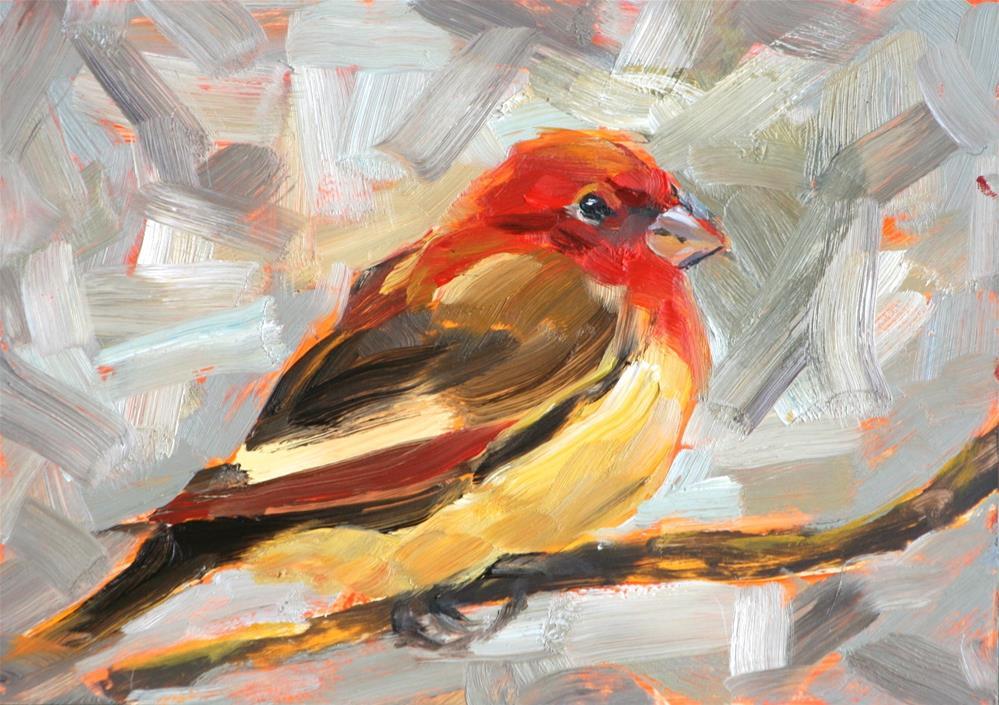 """House Finch"" original fine art by Cynthia Mahlberg"