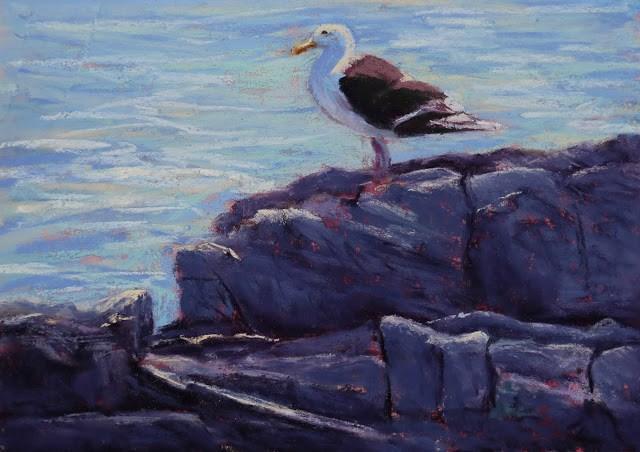 """""""Gull at Inner Ledge"""" original fine art by Sharon Lewis"""