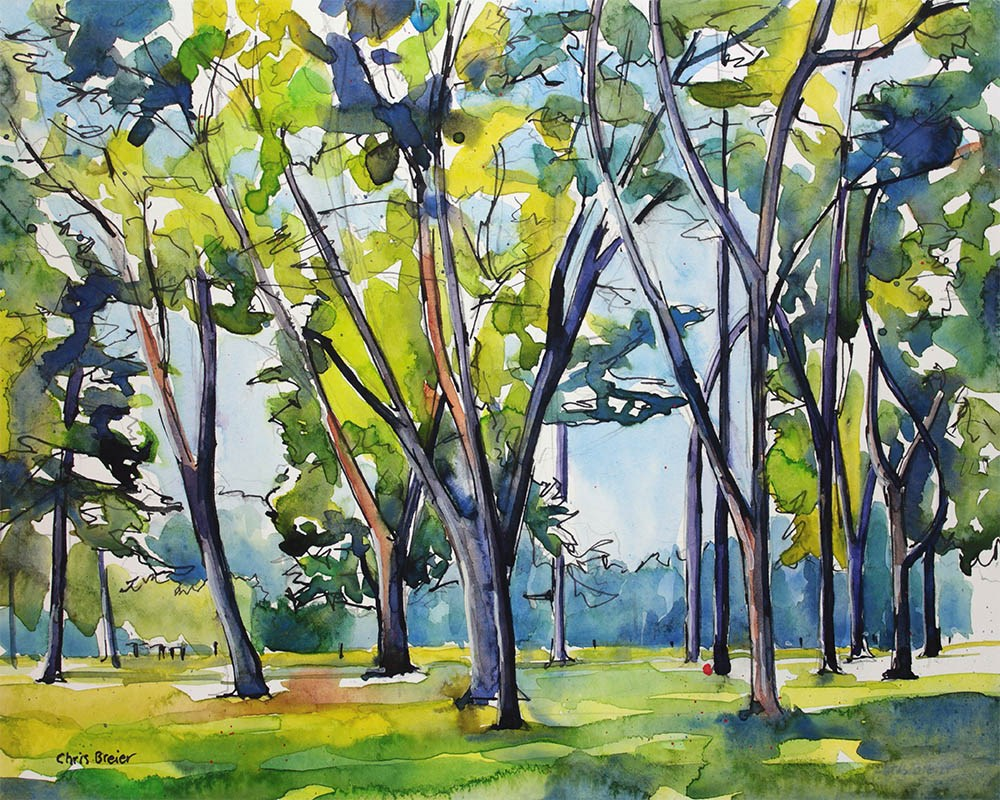 """Trees at Krull Park"" original fine art by Chris Breier"
