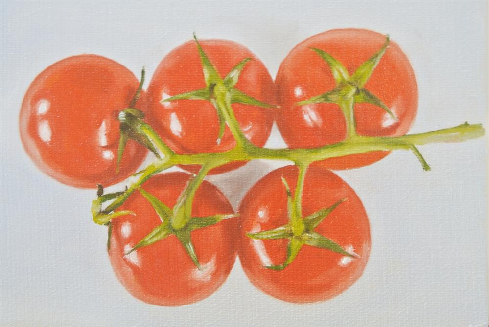 """""""Tomatoes From Above"""" original fine art by James Coates"""