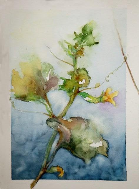 """""""My cuke"""" original fine art by Mitsuru Cope"""