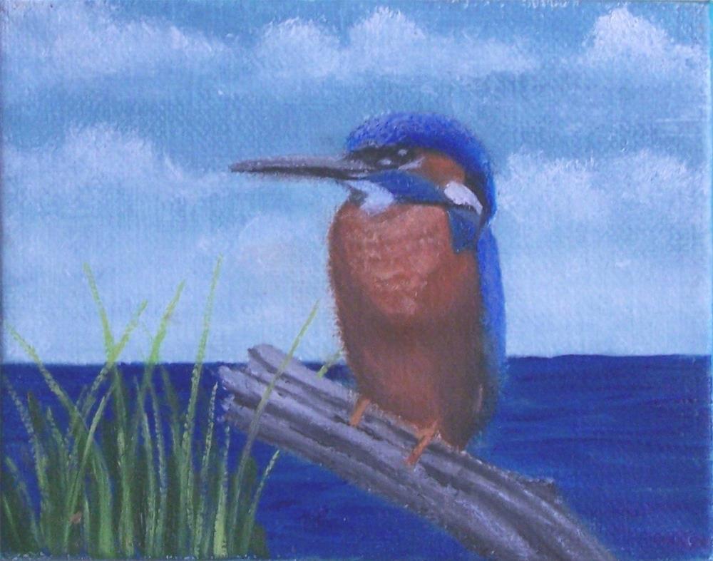 """kingfisher"" original fine art by John Marcum"