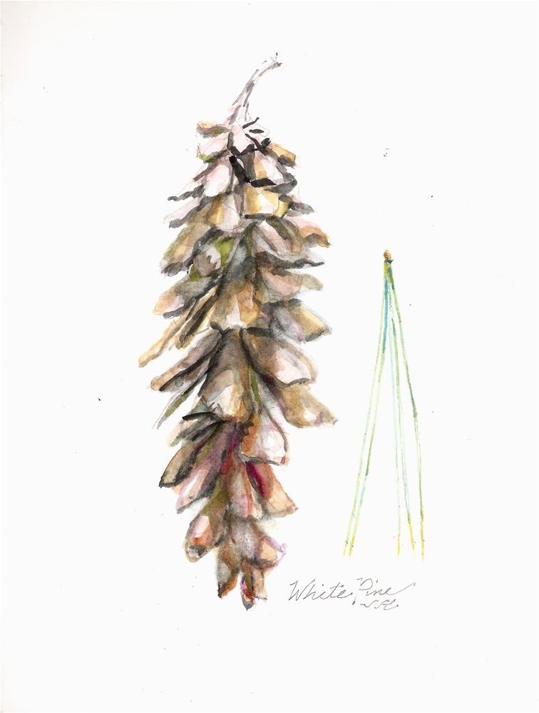"""White Pine"" original fine art by Jean Krueger"