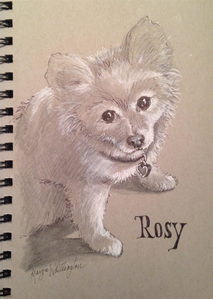 """Rosy"" original fine art by Margie Whittington"