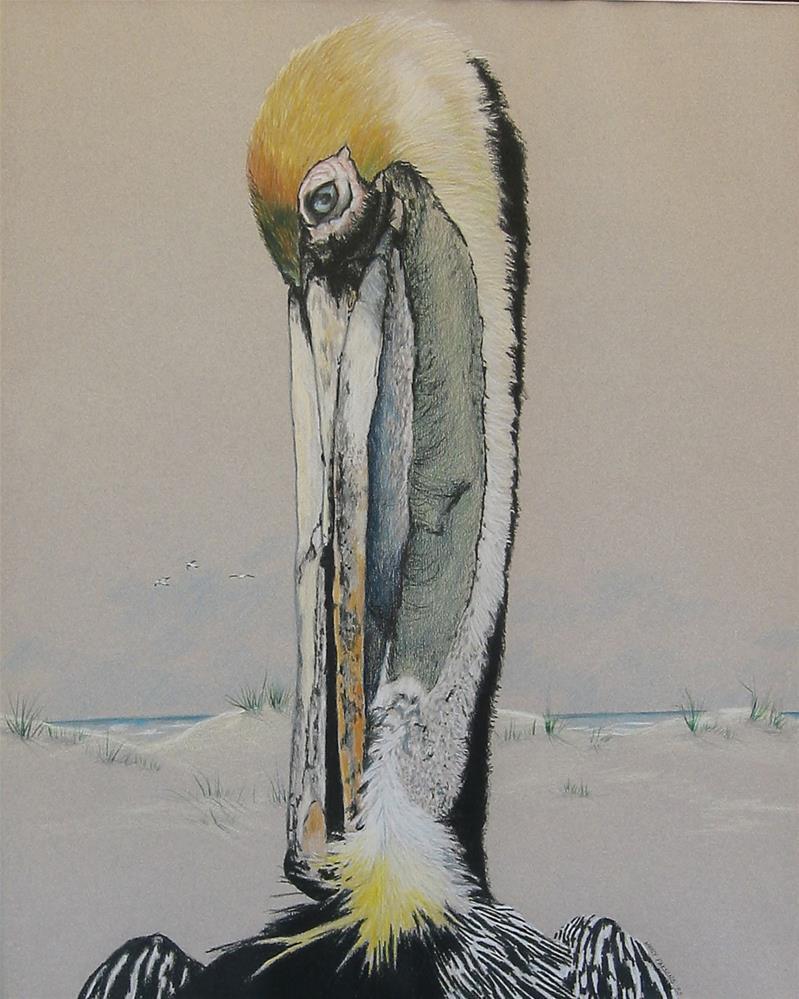 """Brown Pelican"" original fine art by Nancy Parsons"