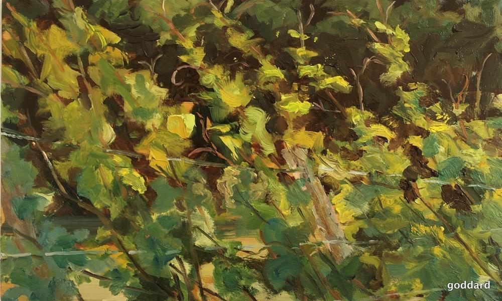 """Vine Dance"" original fine art by Shari Goddard Shambaugh"