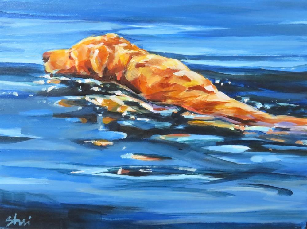 """""""Strong Swimmer"""" original fine art by Shari Buelt"""