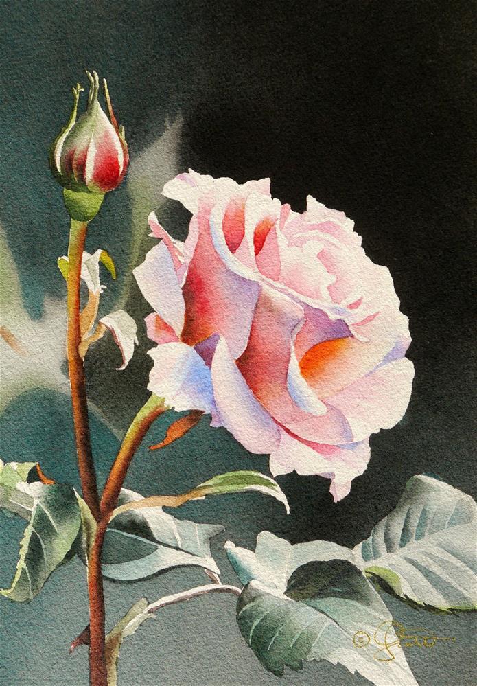 """Pink Rose"" original fine art by Jacqueline Gnott, TWSA, WHS"