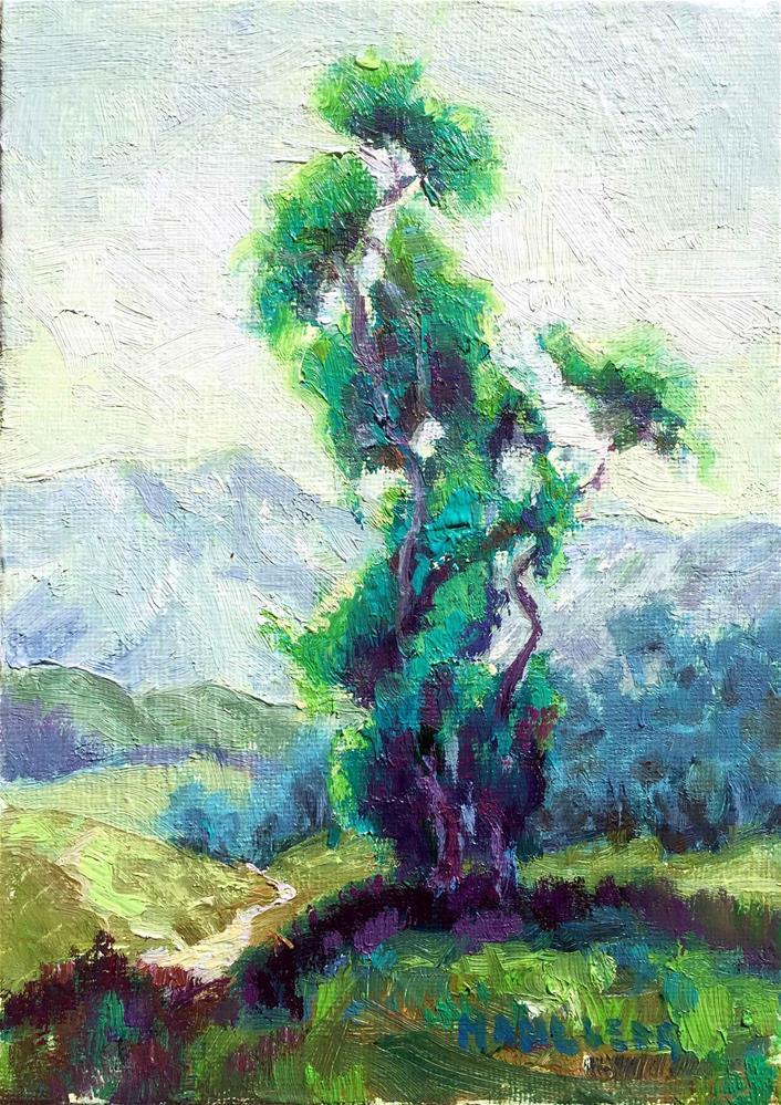 """Eucalyptus Blue Green"" original fine art by Cynthia Mahlberg"