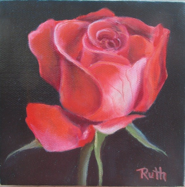 """One Red Rose"" original fine art by Ruth Stewart"