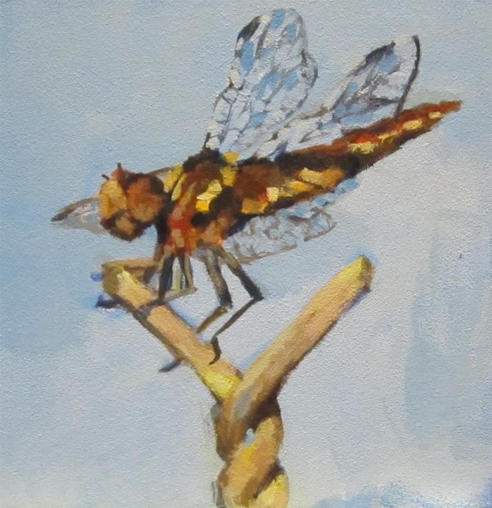 """Dragonfly #1"" original fine art by Kaethe Bealer"