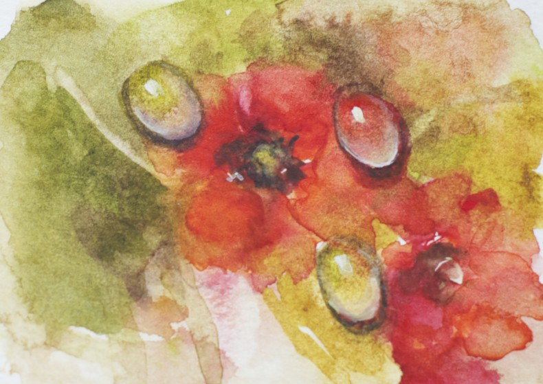 """""""Water Droplets on Poppies"""" original fine art by Sue Churchgrant"""