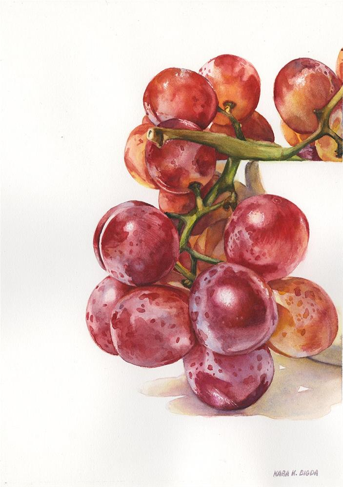 """Grape Study"" original fine art by Kara K. Bigda"