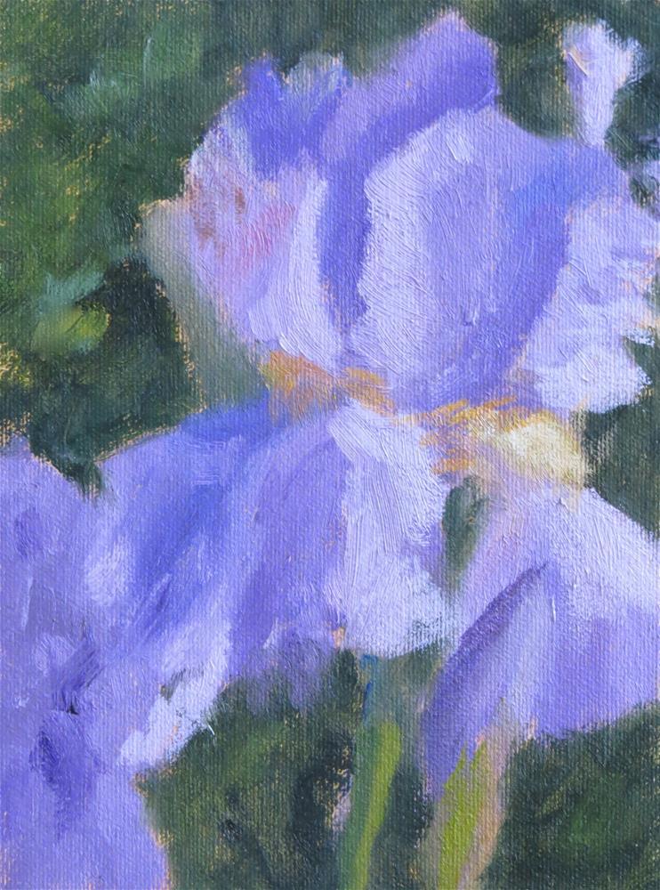 """Garden Lilac"" original fine art by Pam Holnback"