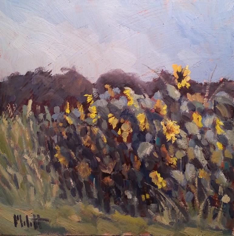 """Sunflower Garden Contemporary Impressionism original paintings"" original fine art by Heidi Malott"