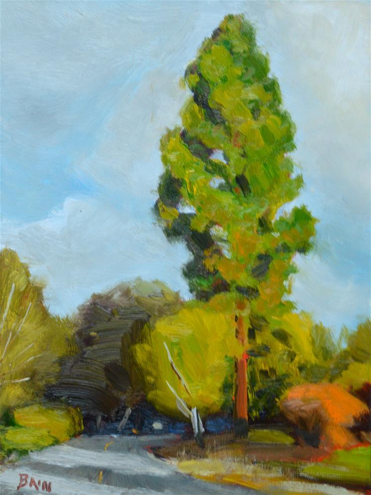 """Morning Sun Arbor Avenue"" original fine art by Peter Bain"