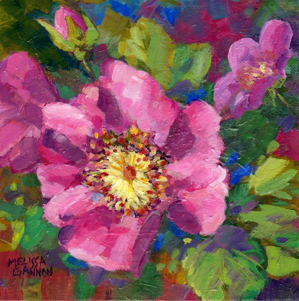 """Rose Conversation"" original fine art by Melissa Gannon"