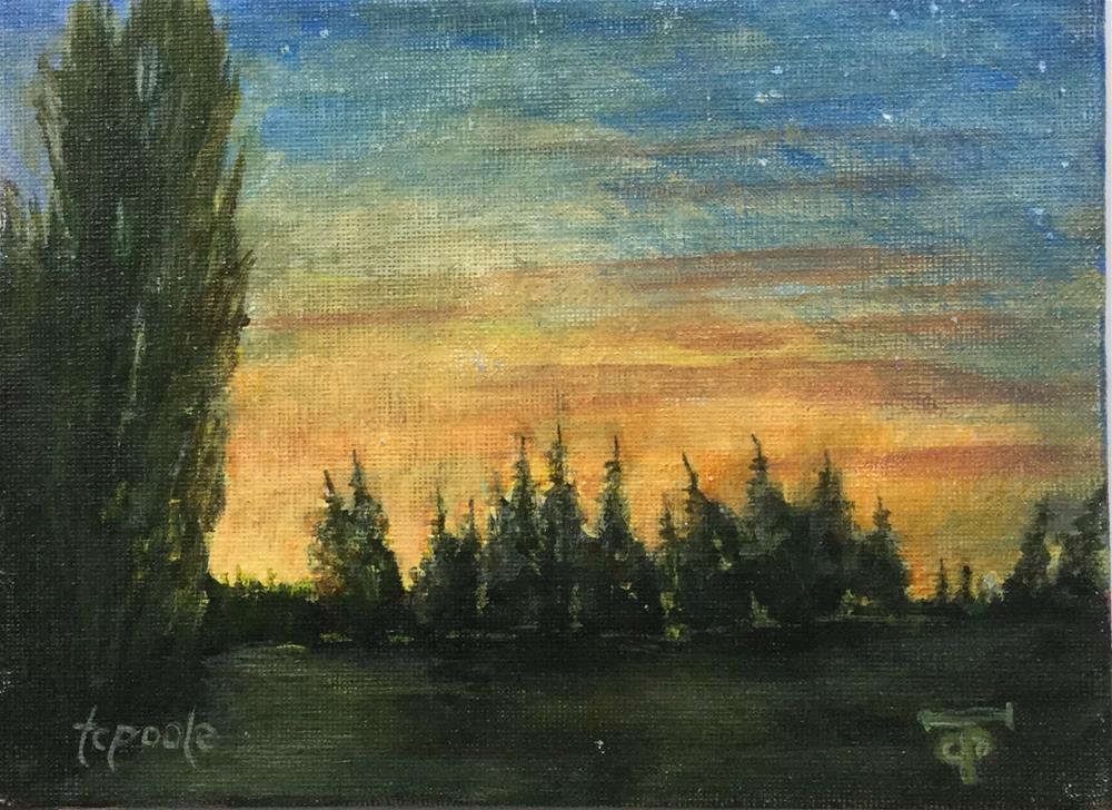 """Fairplex Stars"" original fine art by T.C. Poole"