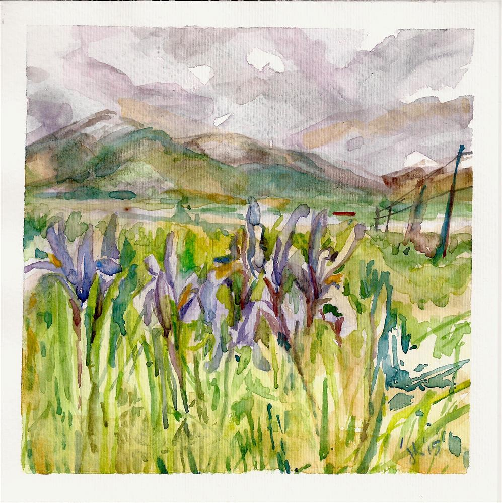 """Wild Iris 2"" original fine art by Jean Krueger"