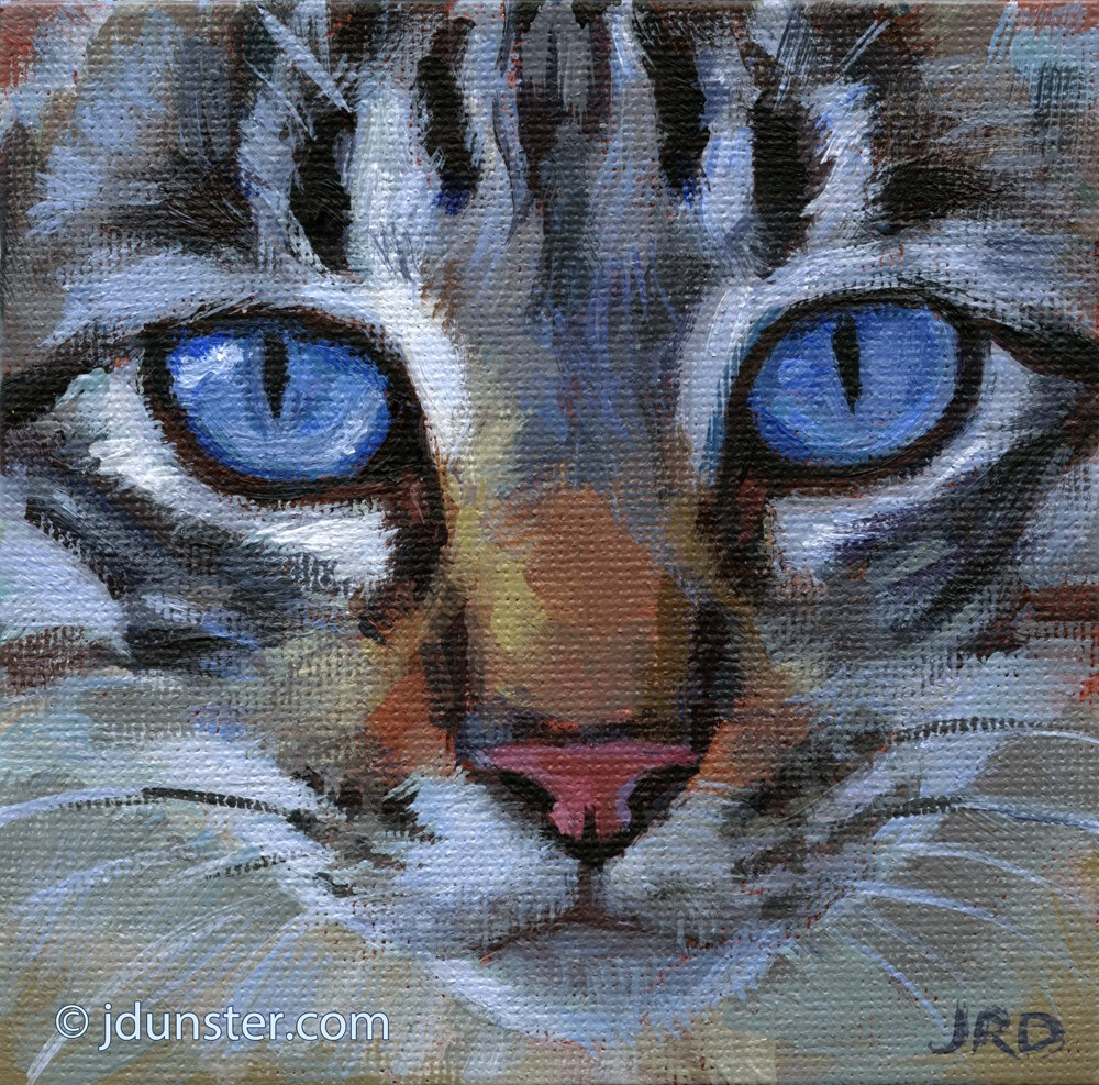 """Blue-Eyed Tabby"" original fine art by J. Dunster"