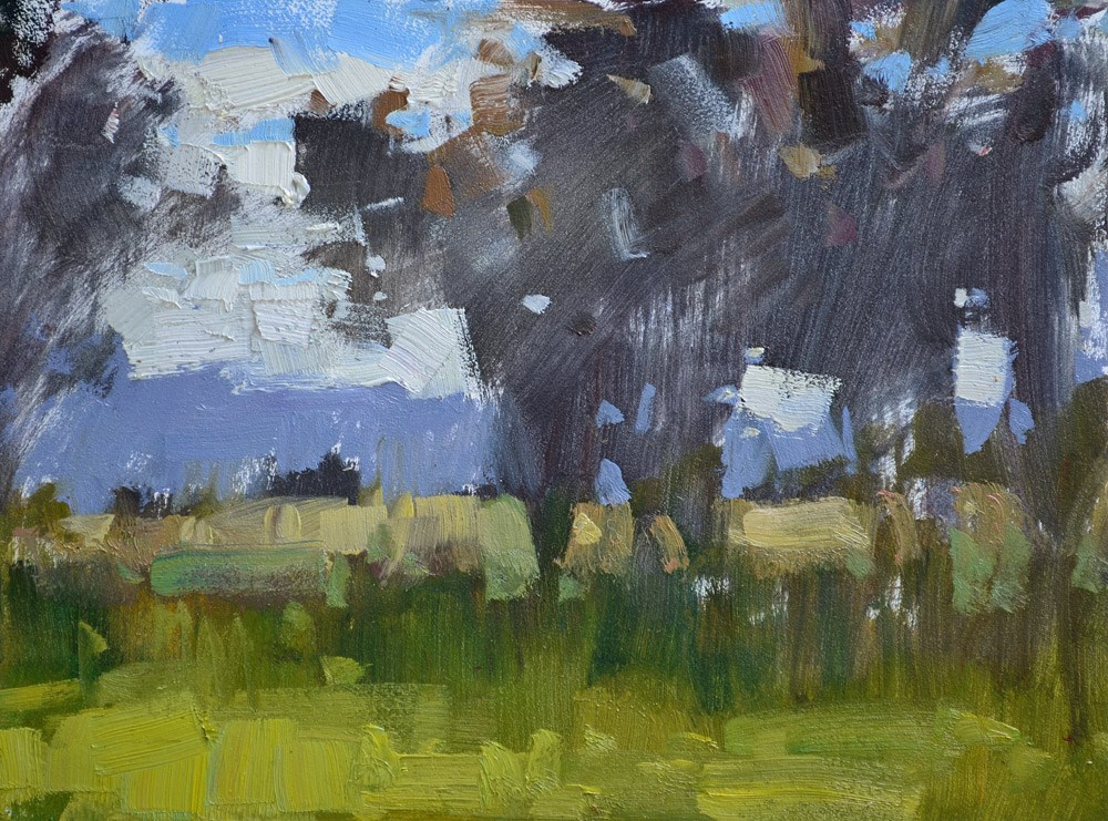 """Fenceline Study"" original fine art by Carol Marine"