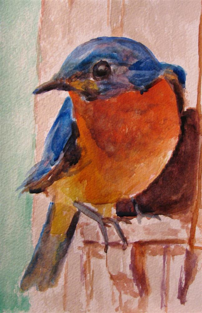 """Bluebird near the Box"" original fine art by Susan Elizabeth Jones"