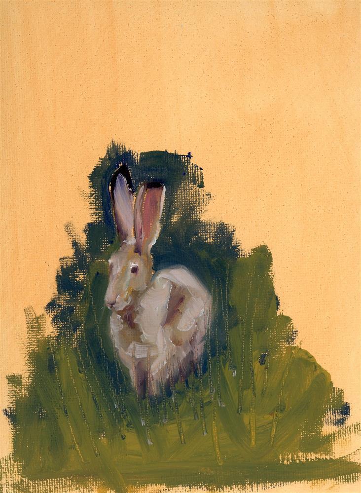 """Jack Rabbit Study"" original fine art by Susanne Billings"