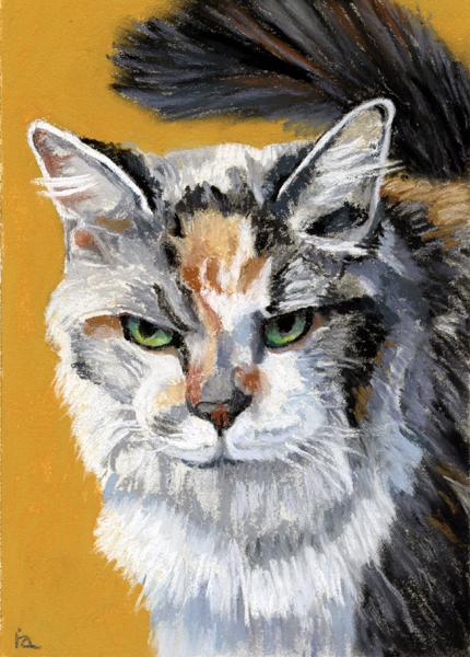 """El Gato"" original fine art by Ria Hills"
