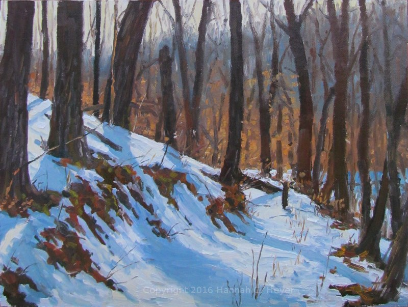 """Along the Old Logging Trail"" original fine art by Hannah C. Heyer"