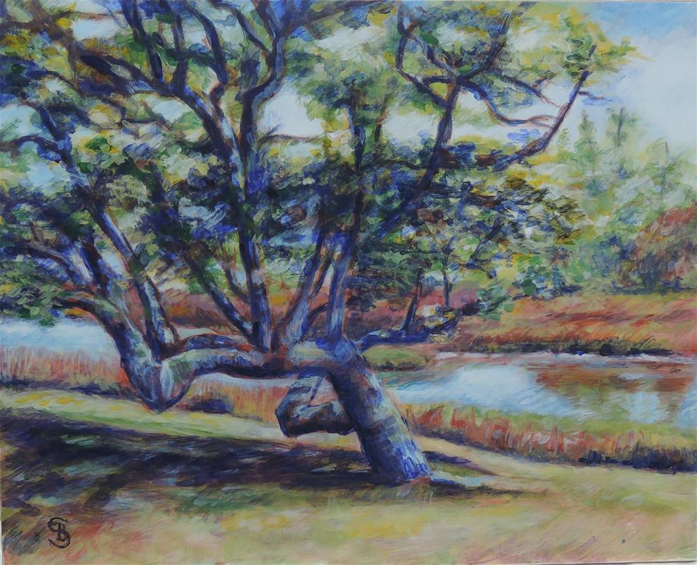 """""""Yaupon Tree in Beaufort"""" original fine art by Belinda Scheber"""