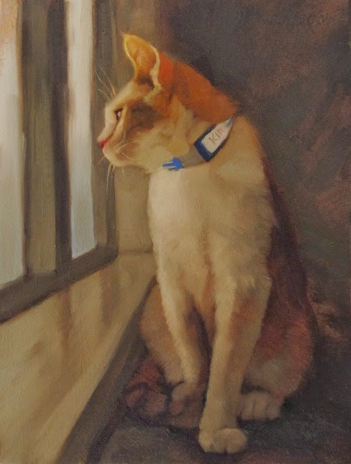 """Kirk the shelter cat"" original fine art by Diane Hoeptner"