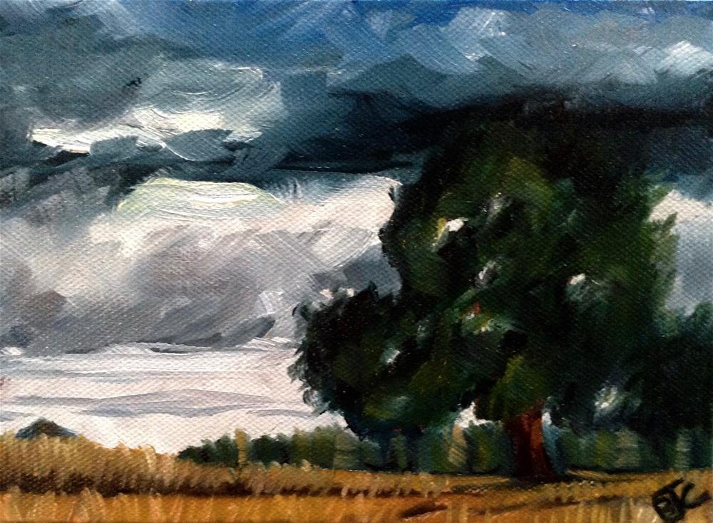 """""""Scrub Oak"""" original fine art by Bobbie Cook"""