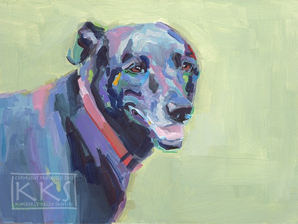 """Buster"" original fine art by Kimberly Santini"