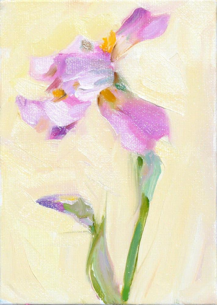 """Iris,still life,oil on canvas,7x5price$175"" original fine art by Joy Olney"
