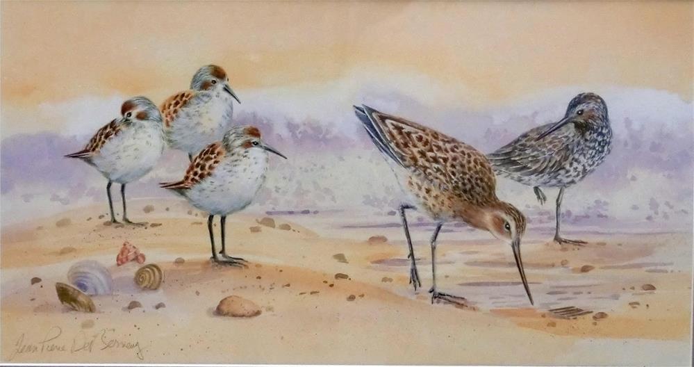 """""""Shore birds III, framed"""" original fine art by Jean Pierre DeBernay"""
