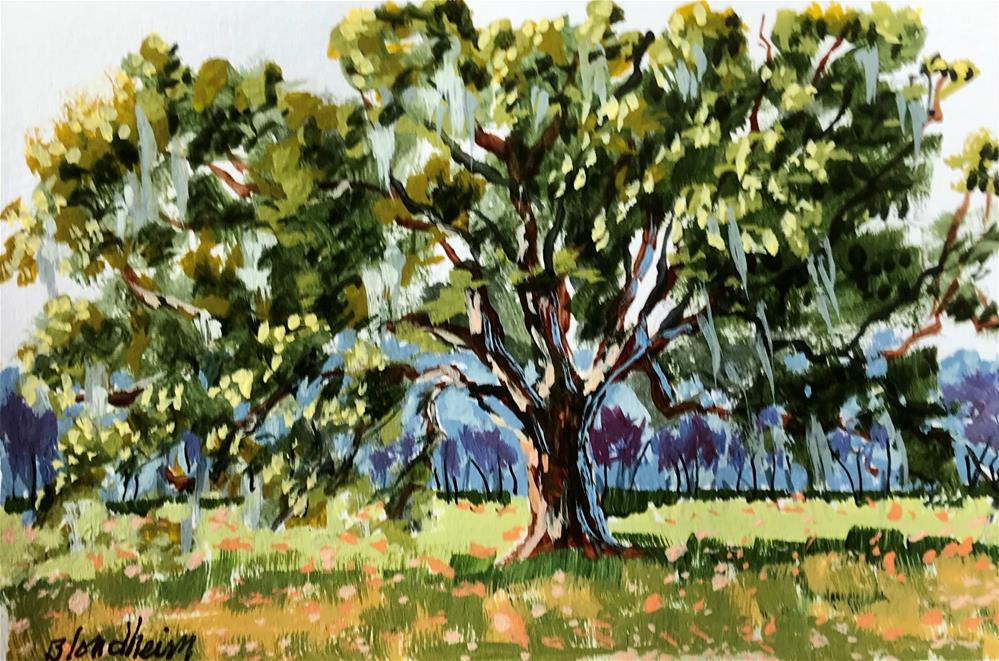 """Live Oak Field"" original fine art by Linda Blondheim"