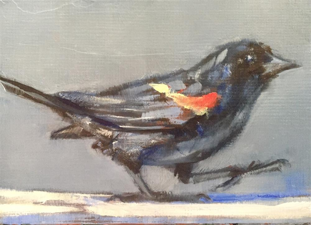 """Red-winged Blackbird"" original fine art by Gary Bruton"