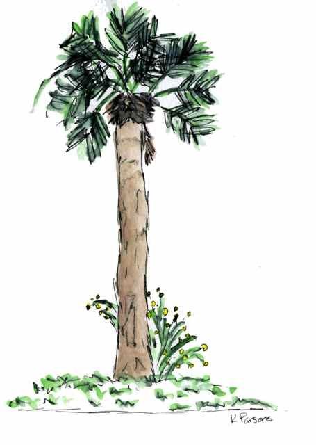 """Palm"" original fine art by Kali Parsons"