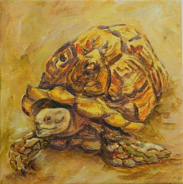 """Turtle #4"" original fine art by Gloria Urban"
