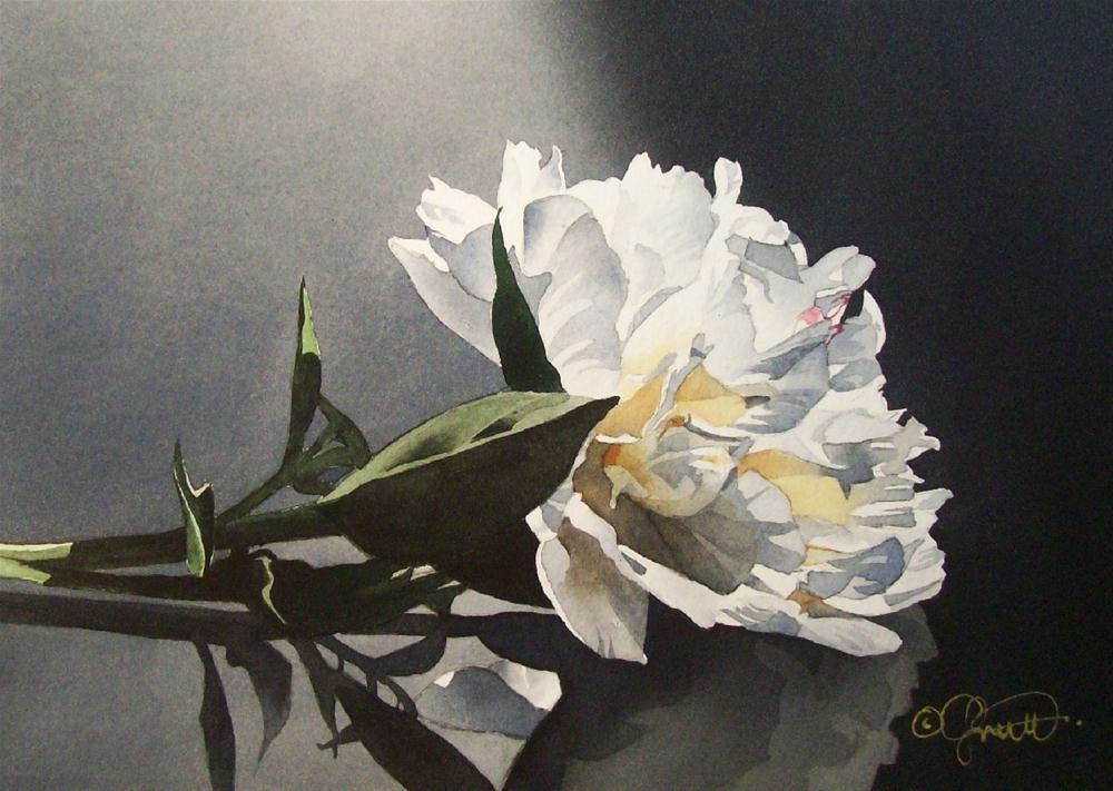 """Spotlight Peony"" original fine art by Jacqueline Gnott, TWSA, WHS"