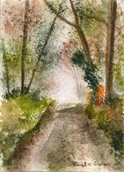 """Misty Woods ACEO"" original fine art by Janet Graham"