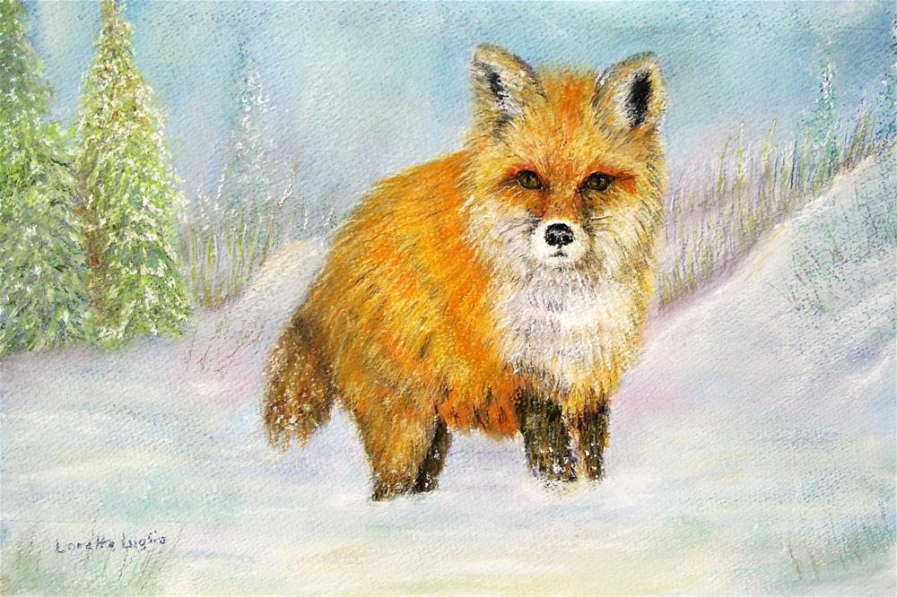 """""""Red Fox in Winter"""" original fine art by Loretta Luglio"""