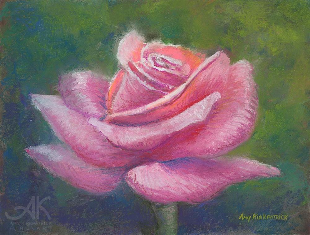 """PINK ROSE #0711"" original fine art by Amy Kirkpatrick"