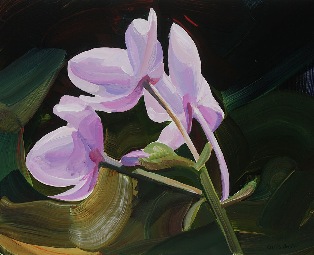 """Pink Flowers"" original fine art by Chris Breier"