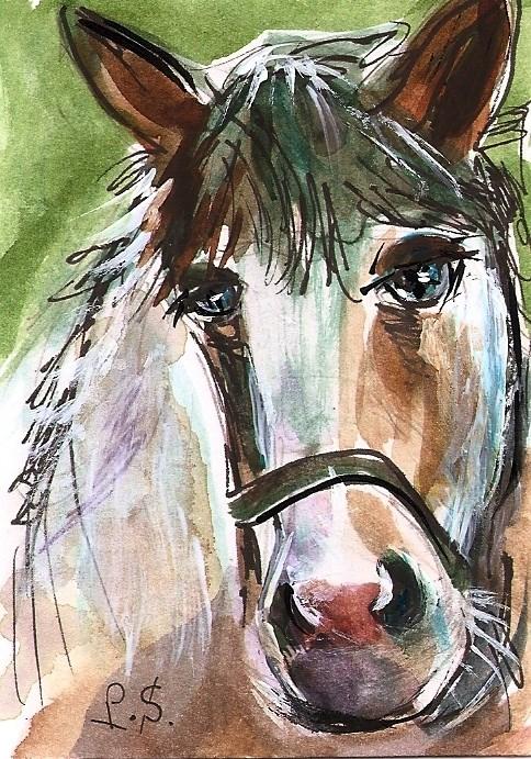 """ACEO Blue Eyes Pony Horse Mixed Media Miniature Art by Penny Lee StewArt"" original fine art by Penny Lee StewArt"