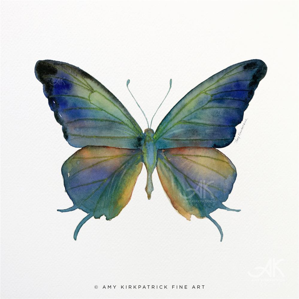 """#57 Marsyas Butterfly #0367"" original fine art by Amy Kirkpatrick"