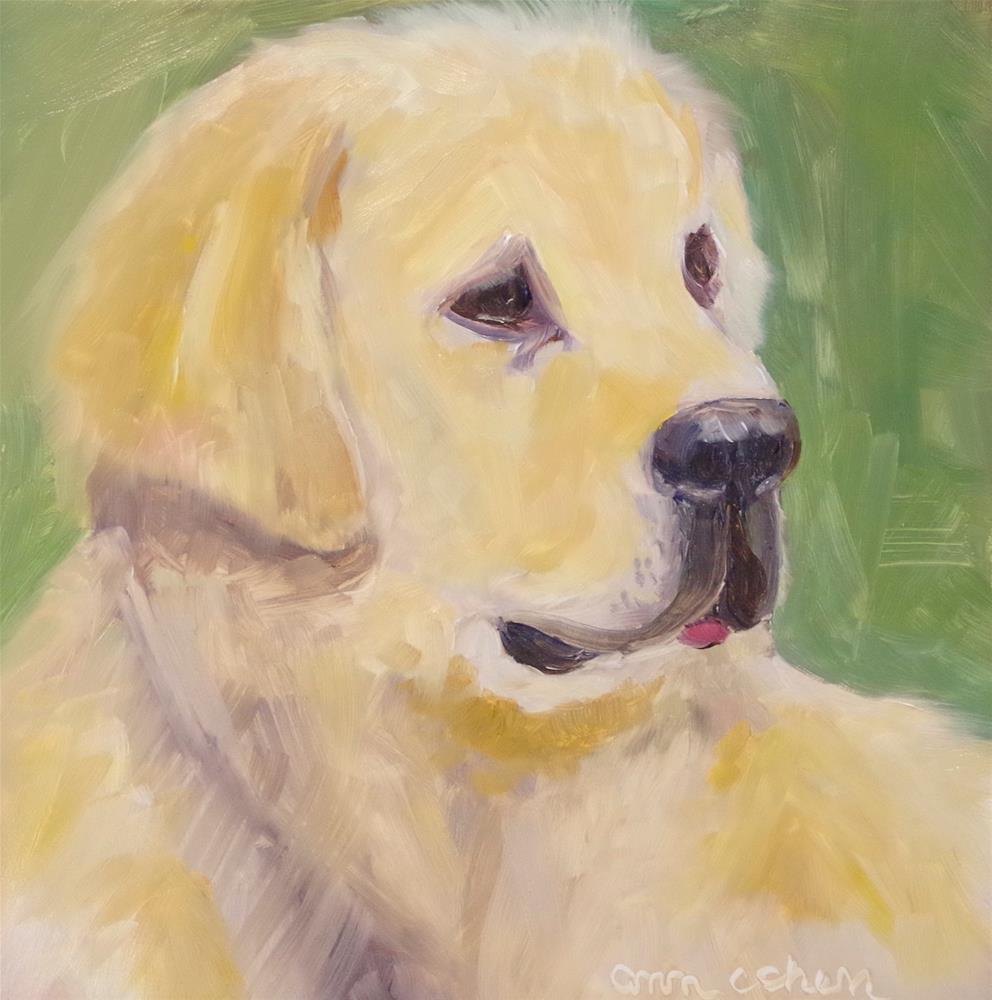 """Pure Gold"" original fine art by Ann Cohen"