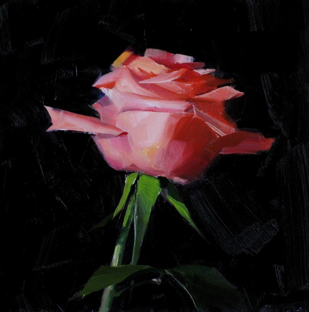 """Pink Rose Study 7"" original fine art by Qiang Huang"
