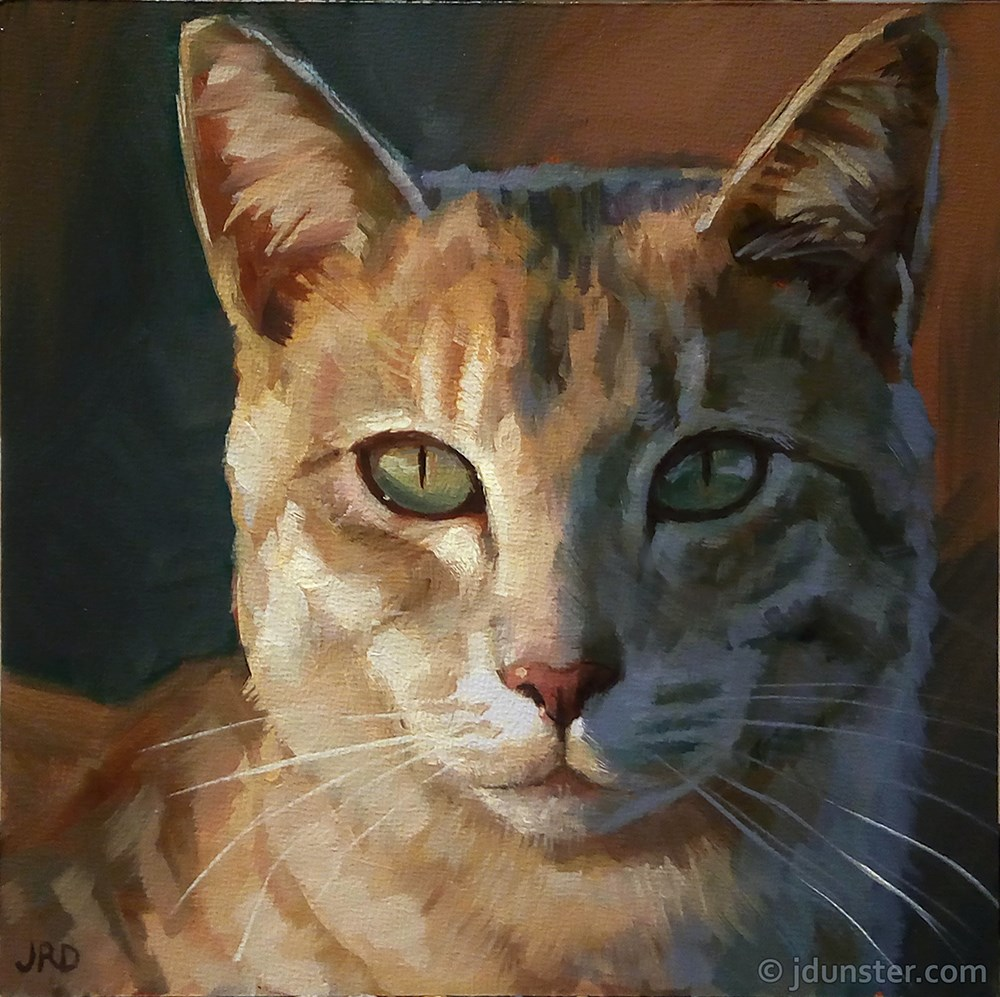 """Shadowed Kitty Portrait"" original fine art by J. Dunster"